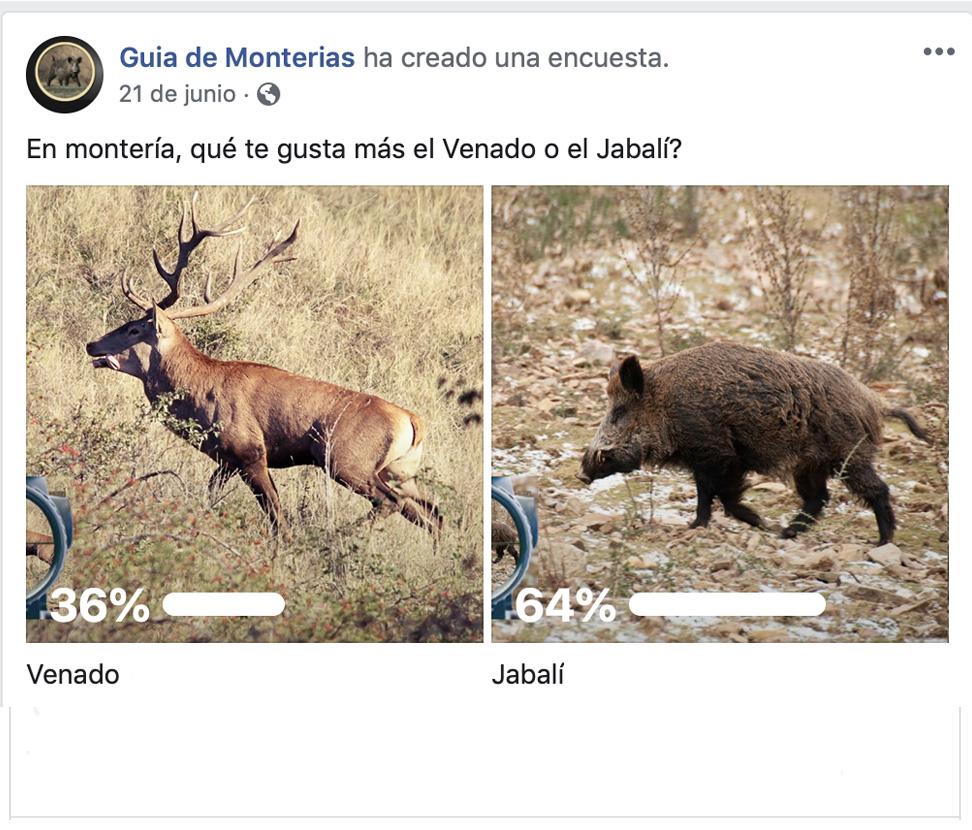 Encuestas Facebook Todas
