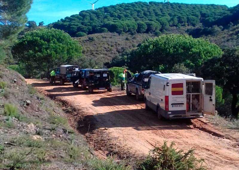 Los cazadores andaluces podrán desplazarse por su región aunque haya confinamiento
