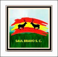 SaulBravoSC