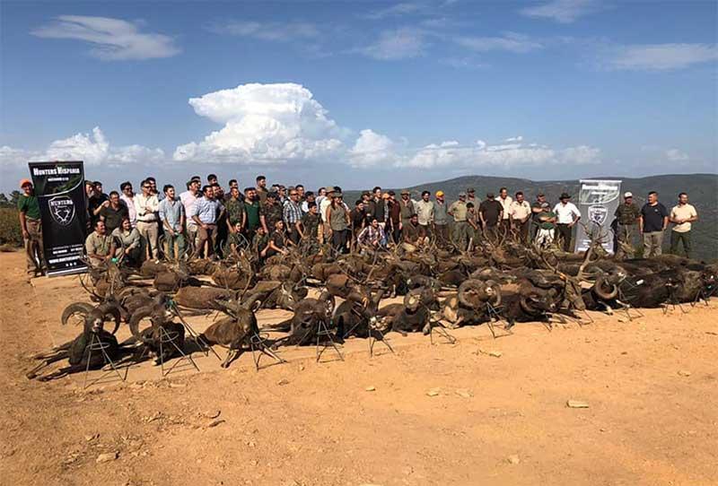 Resultado Montería Los Azahares 2019 Hunters Hispania